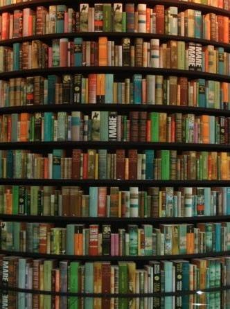 Unico spiraglio di luce in tanta tristezza erano i miei libri; fui fedele a loro com'essi eran rimasti fedeli a me e li rilessi da cima a fondo non so quante volte. (Charles Dickens)