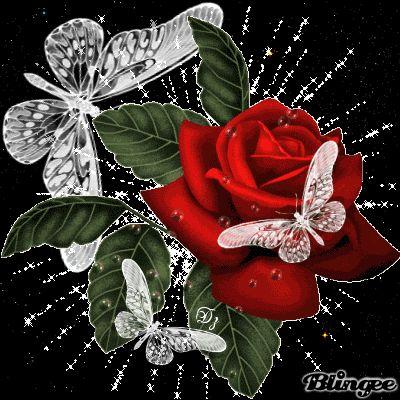 Gifs Hermosos Flores Encontrads En La Web Hugs And