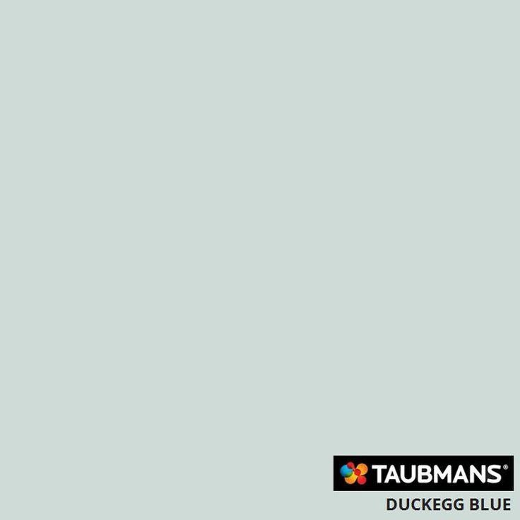 #Taubmanscolour #duckeggblue