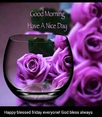 Image result for gud morning friends have a nice day