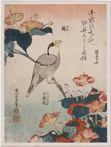 Bigbeakandmirabilis - Katsushika Hokusai