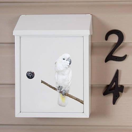 Hand Painted Mailbox Parrot hand painted letter box
