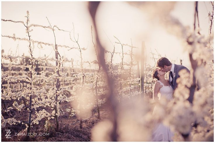Top 10 Cape Town Wedding Venues (4-3) Landtscap – Stellenbosch This one is special – arguably the venue with the best panoramic view of the whole of the Winelands – with views stretching from Hangklip to Stellenbosch, to Wellington!  But it's not only the views that impress, but also the modern concrete structure mixed with earthy elements and a roof garden – so fresh and creative.