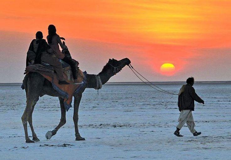 Camel ride in the Kutch desert.