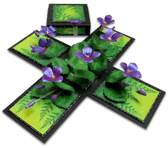 VIOLETS - magic-boxes.com  OMG how gorgeous
