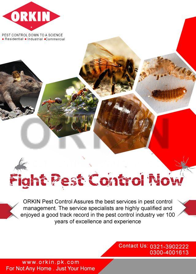 Fight Pest Control Now Pest Control Orkin Pest Control Orkin