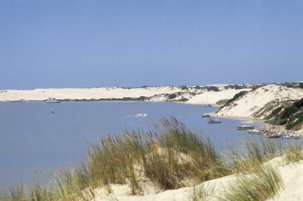 South Australian Film Corporation - Locations Gallery  One of my favourite places, The Coorong on the Limestone coast