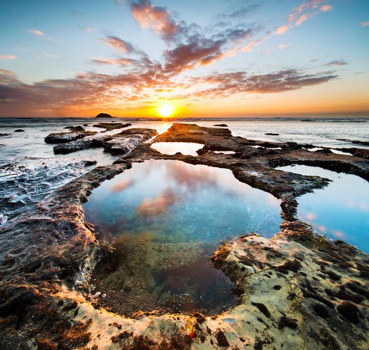のびのびと羽を伸ばそう!ニュージーランド・オークランドで行っておきたい観光スポット5選