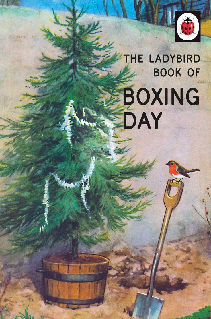 The Ladybird Book of Boxing Day http://www.a-choice-of-gifts.co.uk/giftshop/prod_5552797-The-Ladybird-Book-of-Boxing-Day.html