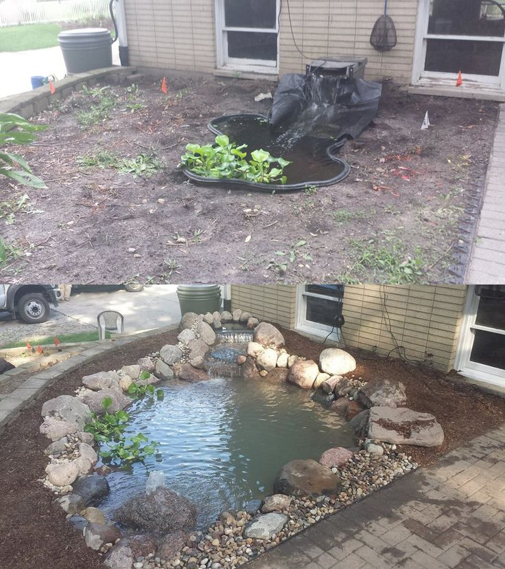 60 best before and after images on pinterest water for Fish pond specialists