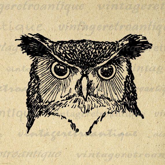 Owl Graphic Printable Digital Bird Head Image Download Vintage Clip Art Jpg Png Eps 18x18 HQ 300dpi No.547 @ vintageretroantique.etsy.com #DigitalArt #Printable #Art #VintageRetroAntique #Digital #Clipart #Download