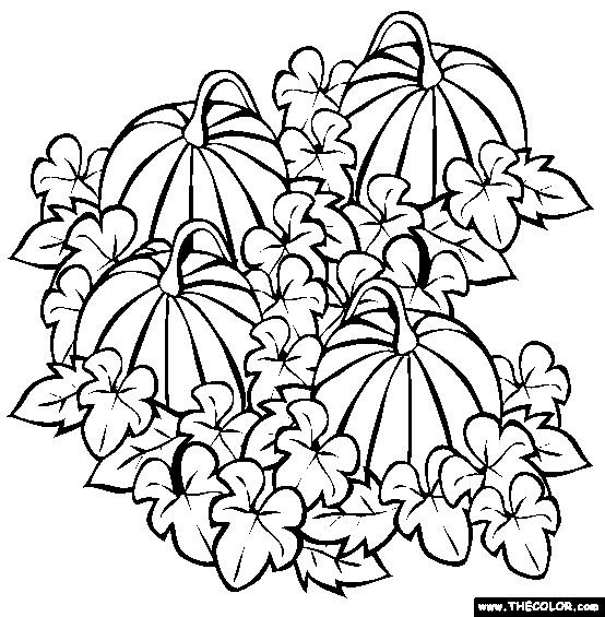 faceless pumpkin coloring pages - photo#35