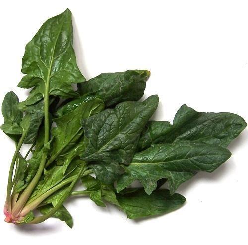 Cómo sembrar espinacas
