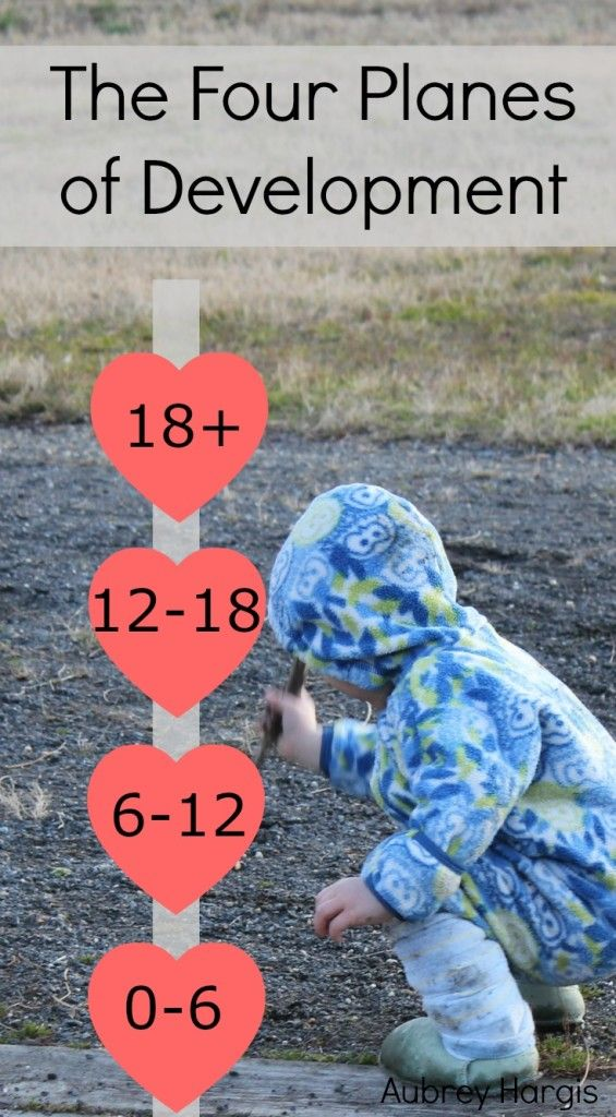 the four planes of development We highlight the groundbreaking idea's of maria montessori, rudolf steiner, john taylor gatto and many others on the stages of child development.