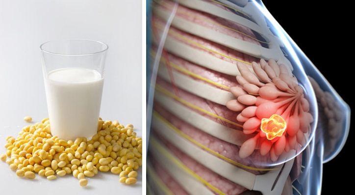 Viele Haushalte bemühen sich mittlerweile um eine gesunde Ernährung und haben dabei von Kuhmilch auf Sojamilch umgestellt.In Gegensatz zu Kuhmilch, enthält Sojamilch keine Laktose, was für Veganer und laktoseintolerante-Menschen zuerst eine gute Alternativescheint. AngereicherteSojamilch ist sogar eine gute Quelle für Proteine, Eisen, B-Vitamine undd Kalzium, während sie einen niedrigen Gehalt an gesättigten Fettsäuren und Cholesterin