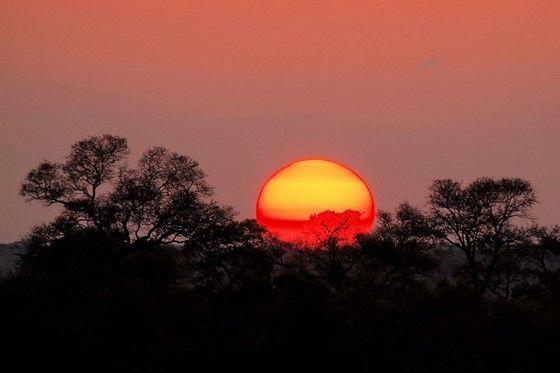Bushveld Sunset: Olympus SLR Talk Forum: Digital Photography Review