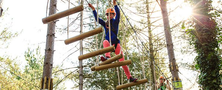 Now the little ones can get in on the tree top action with Go Ape Junior