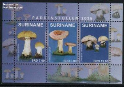Mushrooms s/s