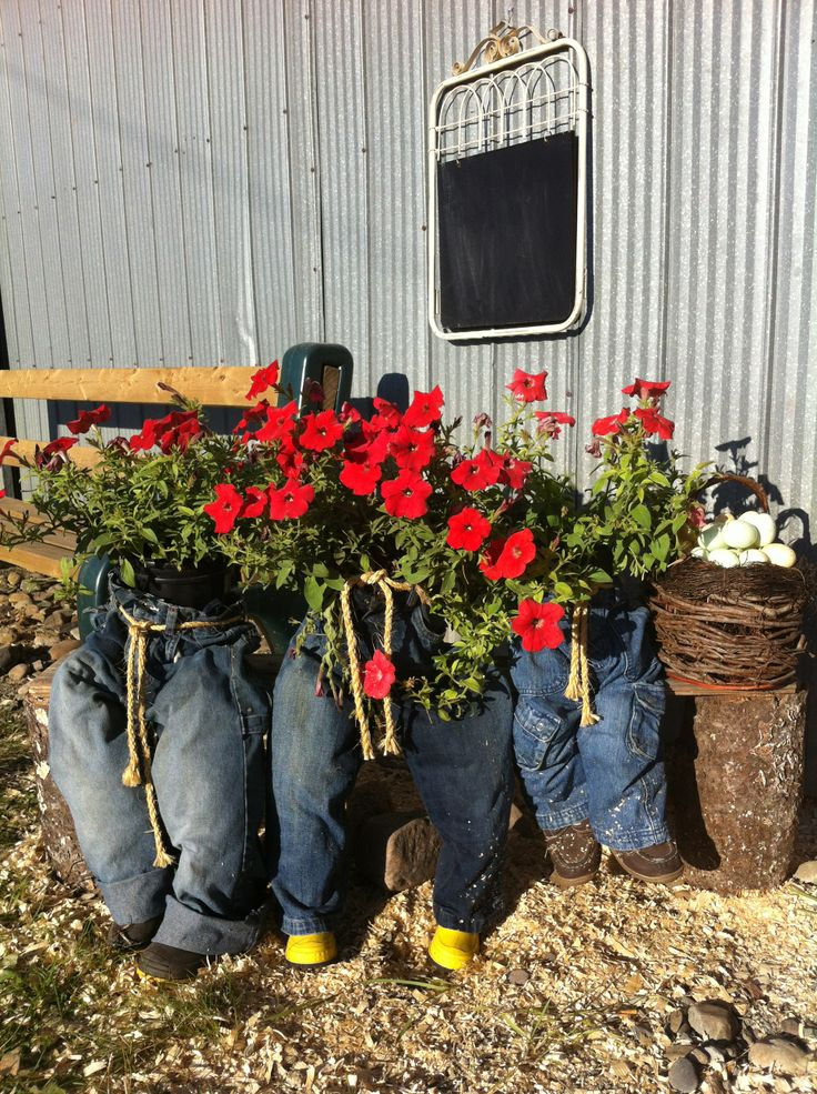 20 best images about potted pants on pinterest crafts for Soil your pants