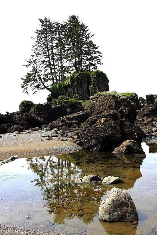 Vancouver Island west coast, BC