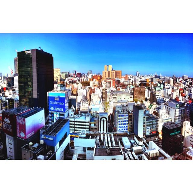High above Akihabara