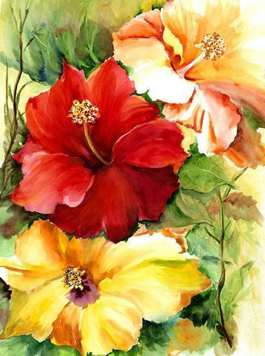 Colorful hibiscus flower painting