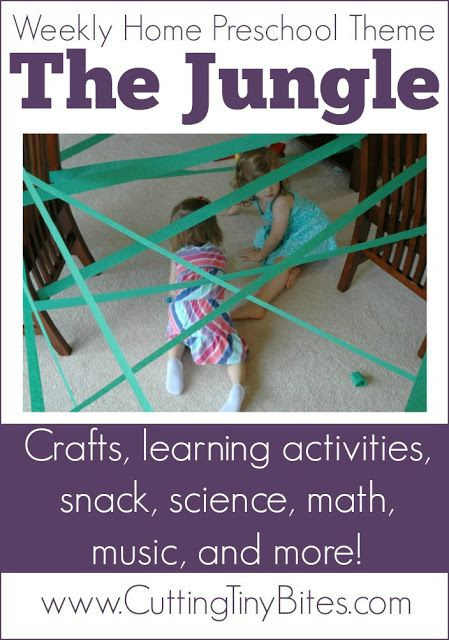 music math and science for preschoolers Tune in to these music science fair project ideas to explore the physics of sound,  musical instruments, and even how people  how about children and adults.