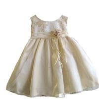 Girl's Metallic Floral Printed  Baby Dress -