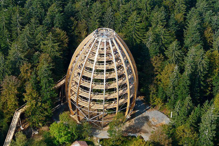 Der Baumwipfelpfad am Nationalpark Bayerischer Wald, Neuschönau.  So gelangst Du dort hin: http://www.outdooractive.com/de/wanderung/bayerischer-wald/rundweg-im-tier-freigelaende-und-baumwipfelpfad/1519898/#axzz28gMDslDw