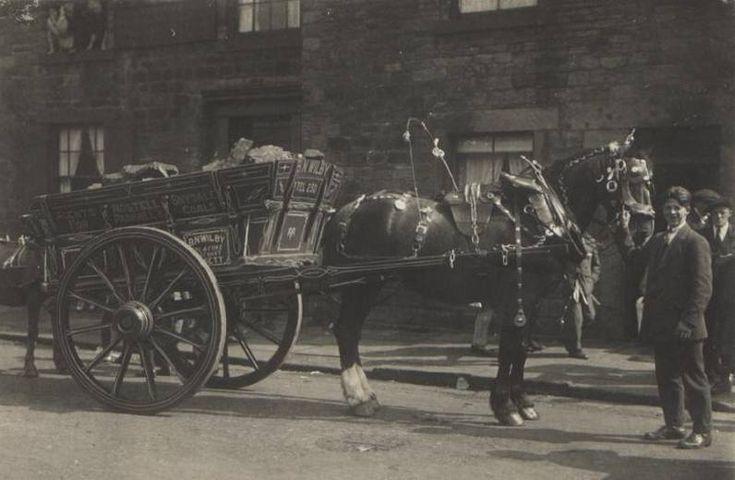 Benton Wilby Coal Merchant