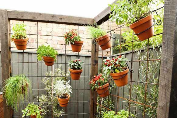 Brad and Lara's Garden - loved the herb garden