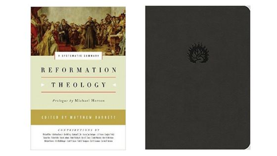 Reformation Study Bible and Systematic Summary Giveaway!