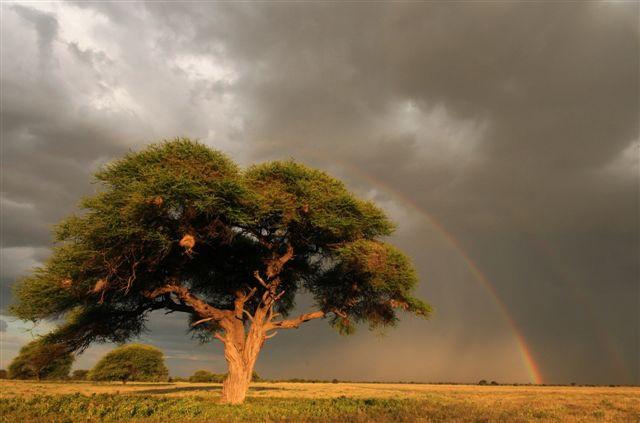 Botswana Holidays Image 2