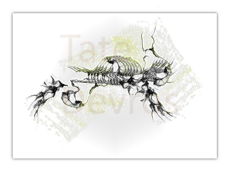 Buried #Turtle #;Bones #2 #ink #paint #sketch by #Tate #Devros.1024 x 768 #pixels.#PNg #file #type.#Download #digital #art piece and enjoy.