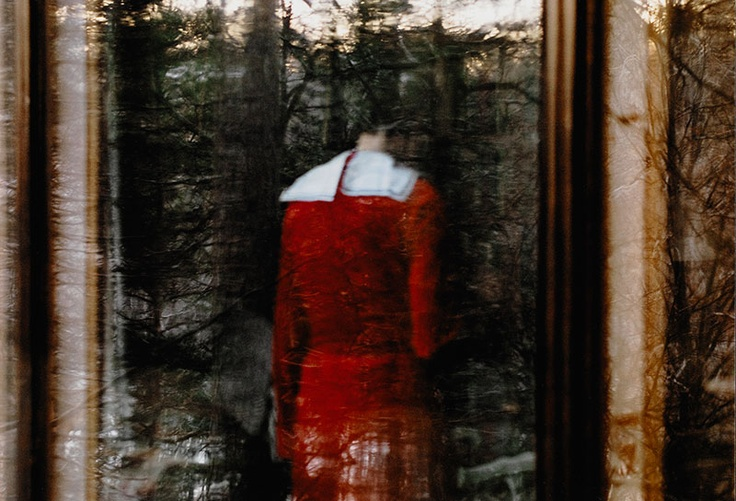 New additions to our collection in Google Art Project including Anni Leppälä's photograph Window (forest) from 2009.