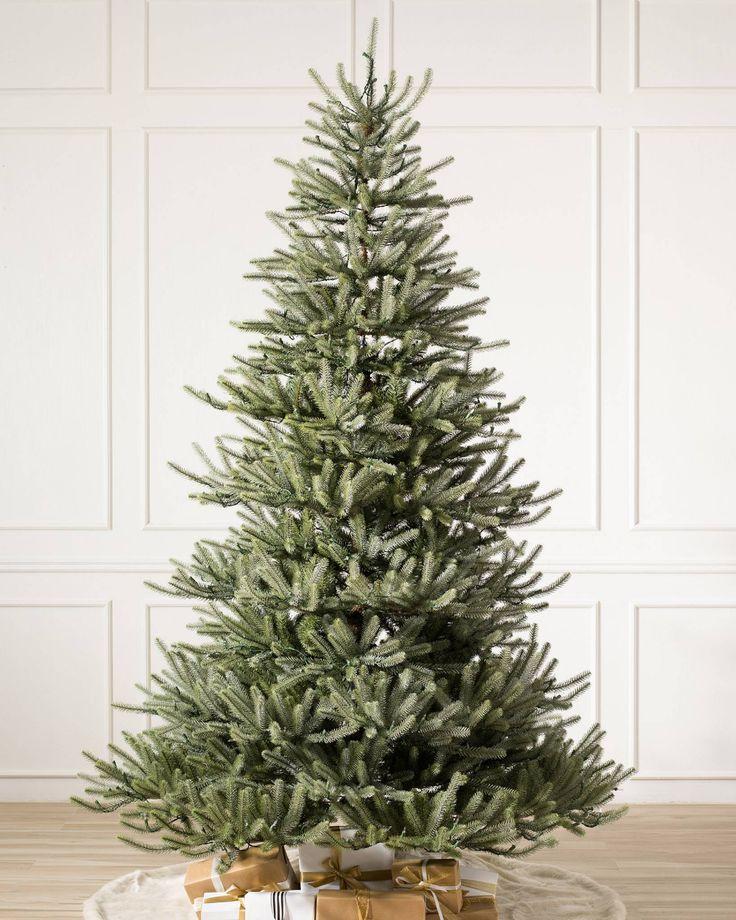 Sanibel Spruce™ Tree Types of christmas trees, Cool