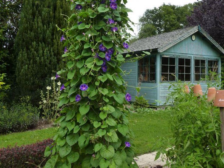 17 meilleures id es propos de hangar peint sur pinterest hangars jardin cottage abris de. Black Bedroom Furniture Sets. Home Design Ideas