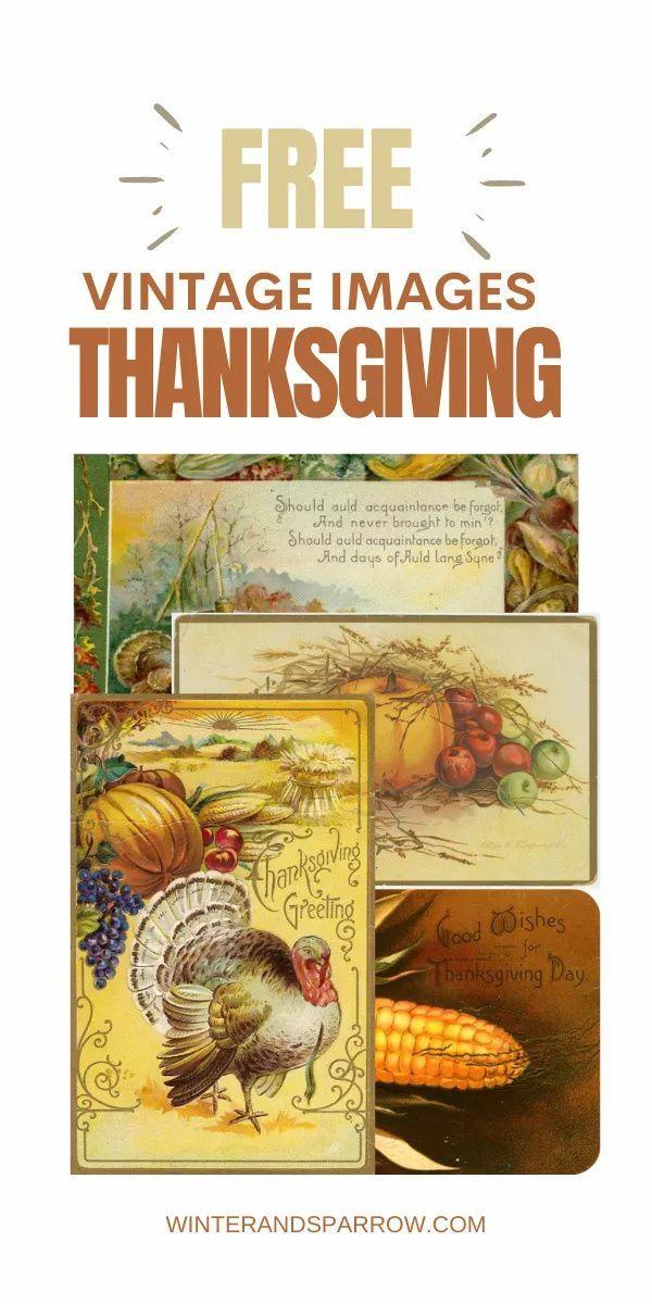 Free Vintage Thanksgiving Images Plus Thankfulness Quotes In 2020 Vintage Thanksgiving Thanksgiving Images Thanksgiving Inspiration