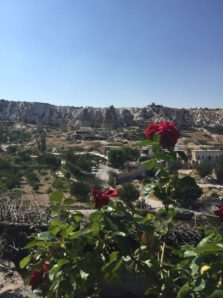 View of Cappadocia by www.grandbazaarshopping.com