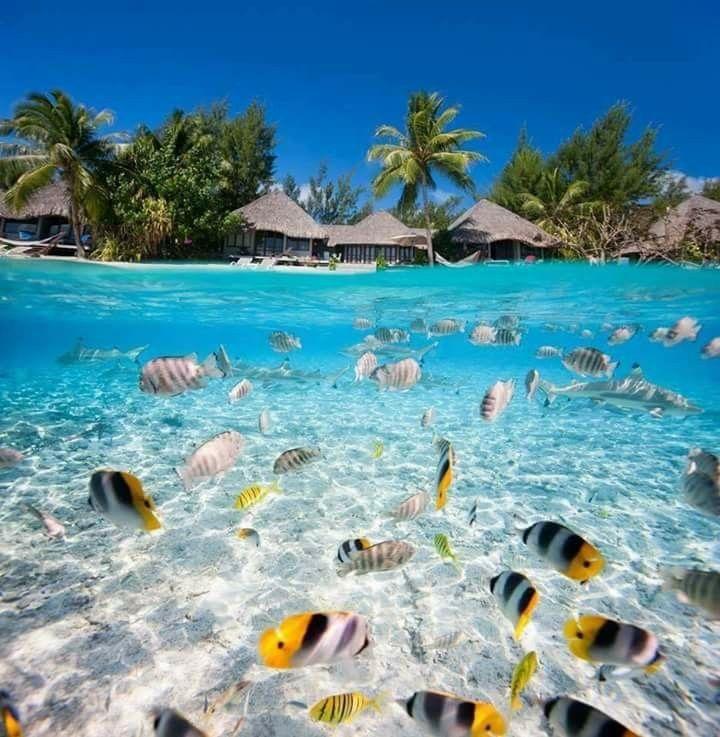 Bora Bora, Polynesia