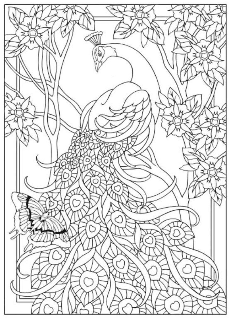 Creative Haven Peacock Designs Coloring Book, Dover Publications