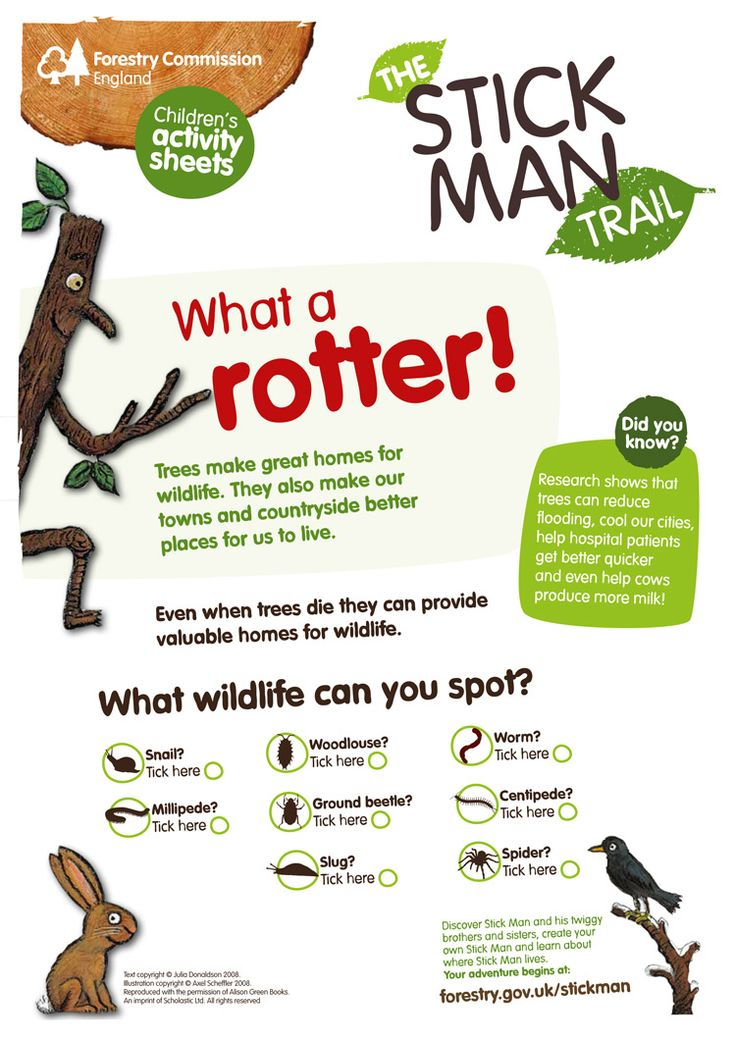 When trees die they provide valuable homes for lots of creepy crawlies! Have fun spotting them with the children this weekend with our 'What a rotter!' activity sheet. http://www.forestry.gov.uk/stickman