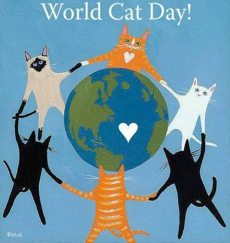 Happy World Cat Day!   World Cat-Day, also known as International Cat-Day, is celebrated throughout the world on August 08, 2013. It was founded in 2002 by the International Fund for Animal Welfare (IFAW) and other animal rights groups.