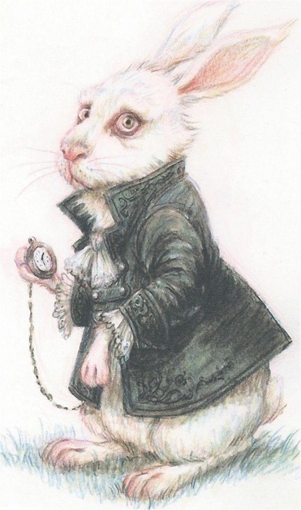 La Atalaya Nocturna: Lunes de Postal (Monday's postcard): Conejo de Ali...