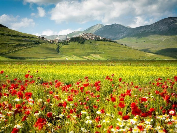 Small Town In Italy, Castelluccio. This small village is the king of the hill, overlooking a vast field of crass and flowers. The stuff fairy tales are made of. It can be found in Umbria and is one of the highest villages in the region