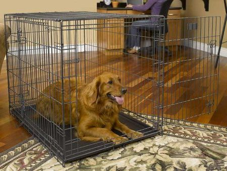 How to Choose a Dog Crate That is Best for Your Dog - Learn about the pros & cons of the various types of pet kennels, such as wire dog crates, plastic crates, soft-sided crates & wood dog crates.   Know which type of crate to buy that is best for your dog and your home.