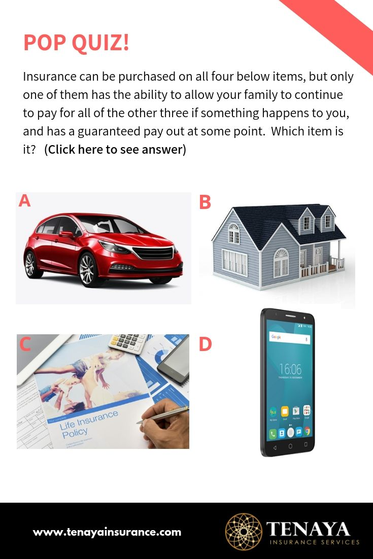 Pop Quiz Insurance Can Be Purchased On All Four Below Items But