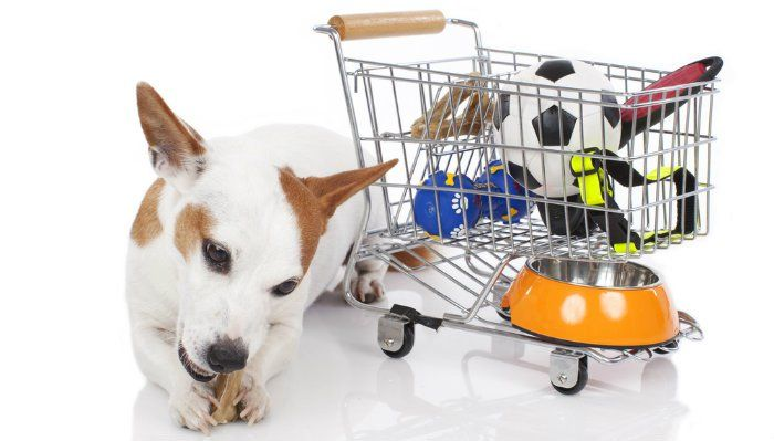 Best Place To Buy Bulk Dog Food