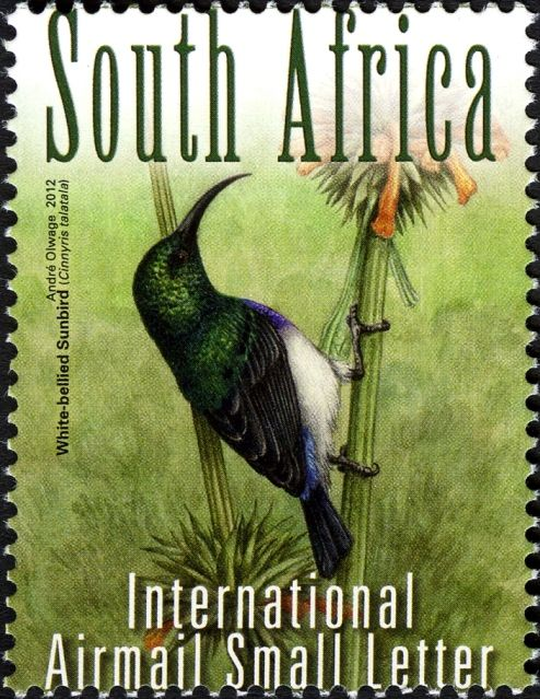 South African White-bellied Sunbird stamp