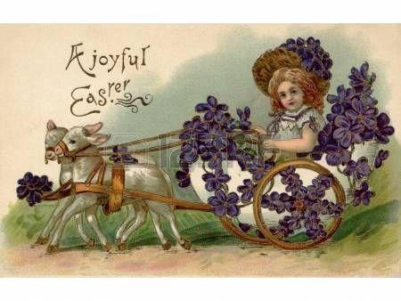 easter vintage: Una cartolina d'epoca di Pasqua di una ragazza a cavallo in un carro pieno di viole tirato da due agnello
